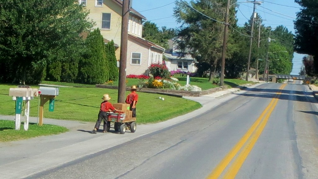 Two little Amish boys with a wagon